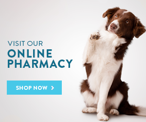 Pharmacy Quick Link